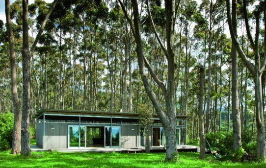 Irving Smith Architects: Kombinace mnoha schopností