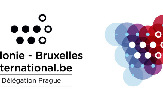 Representation of Wallonia – Brussels