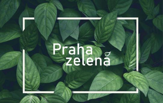 (Čeština) Výstava Praha zelená