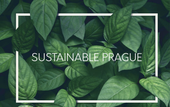 Výstava Sustainable Prague