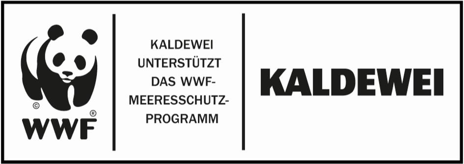 (Čeština) KALDEWEI znamená spojení designu a odpovědnosti