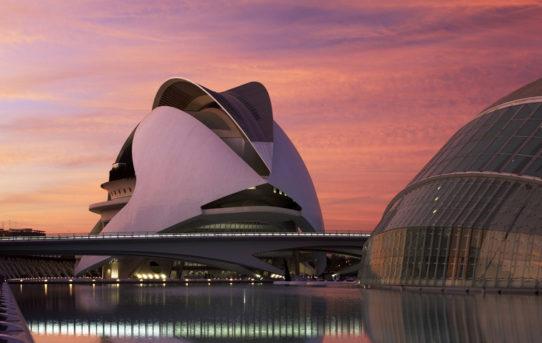 Palau de les Arts Reina Sofía / Santiago Calatrava