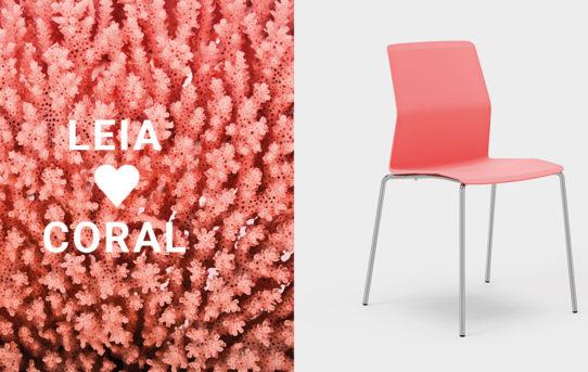 (Čeština) Židle LEIA v nové barvě CORAL