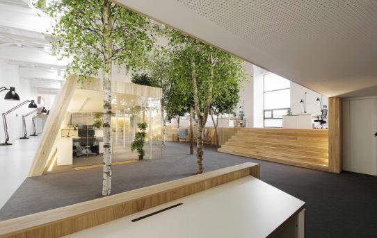 Lenne Office od Kamp Arhitektid