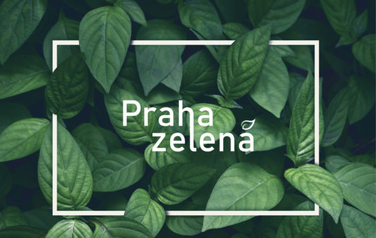 Výstava Praha zelená