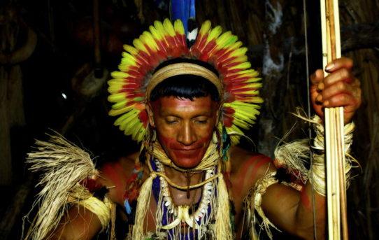 Brazilský prales a původní indiánští obyvatelé Brazílie: Attila Lorant