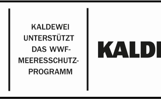 KALDEWEI znamená spojení designu a odpovědnosti