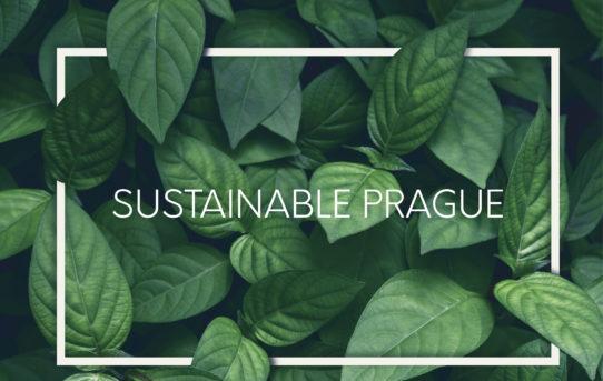 Tisková zpráva k výstavě Sustainable Prague