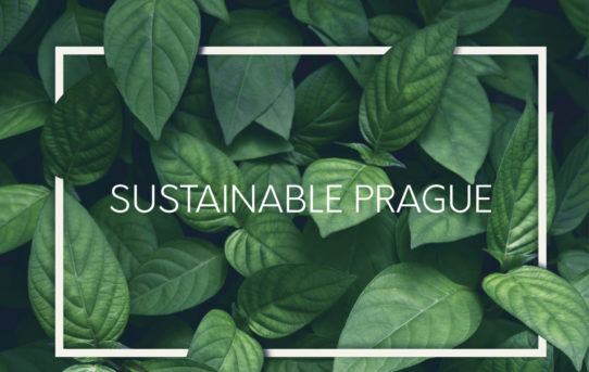 Výstava Sustainable Prague ZRUŠENA
